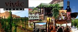 vivac winery.jpg
