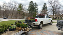 Ready for planting