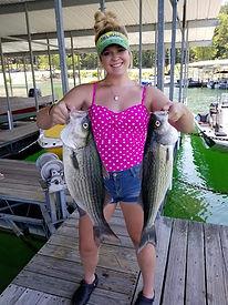 walleye fishing lake norfork