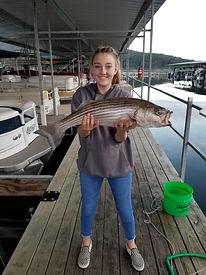 walleye guide norfork lake
