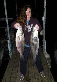 fishing guide lake norfork