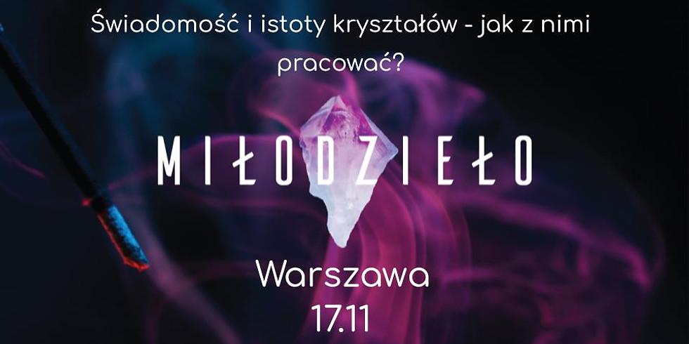 Świadomość i istoty kryształów - jak z nimi pracować? - Warszawa