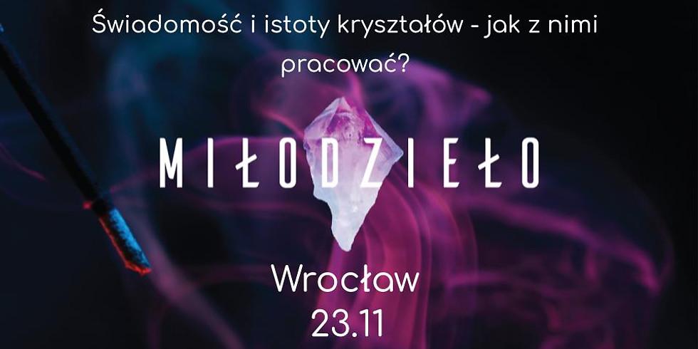 Świadomość i istoty kryształów - jak z nimi pracować? - Wrocław