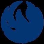 Phoenix-icon-01.png