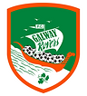 galway rovers.png