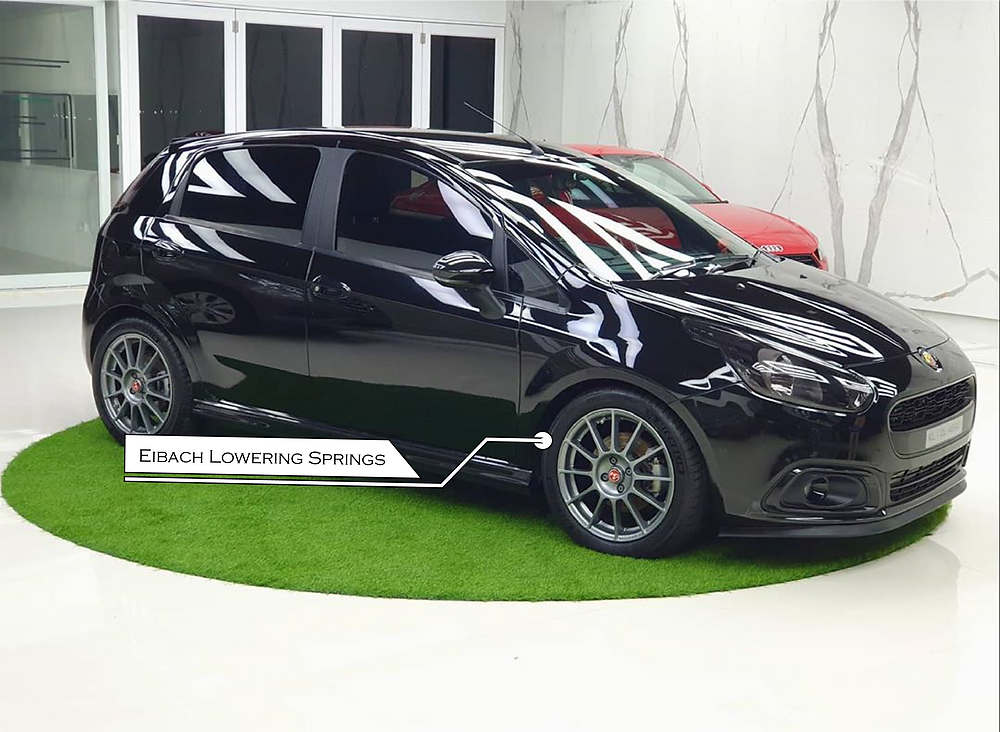 Modified Fiat Abarth Punto with Eibach lowering springs