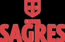 sagres-cerveja-logo-A66FB1E9ED-seeklogo.