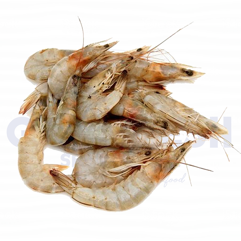 Fresh Gulf Shrimp - Medium 5lb