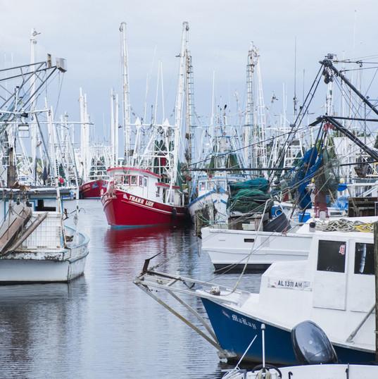 bayou-la-batre-shrimp-boats.jpg
