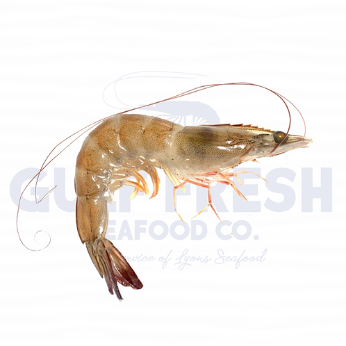 Fresh Gulf Shrimp - Large 5lb