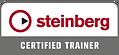 Docente Certificato Steinberg