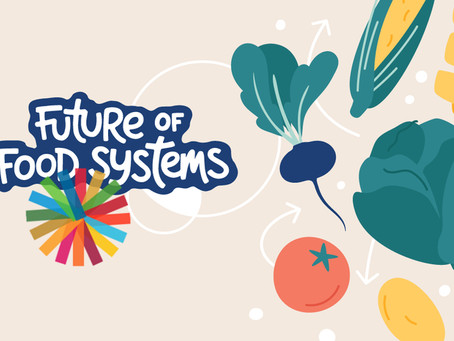 Shaping the future of food systems