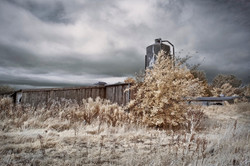 Abandoned Poultry Farm 3
