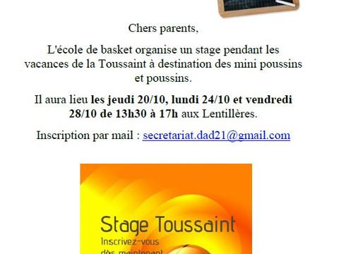 stage Toussaint école de basket