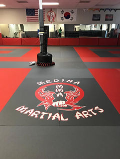 Medina Martial Arts Riverview