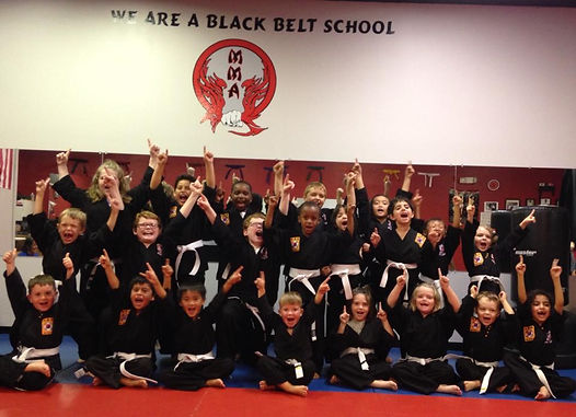 Medina Martial Arts Riverview After school