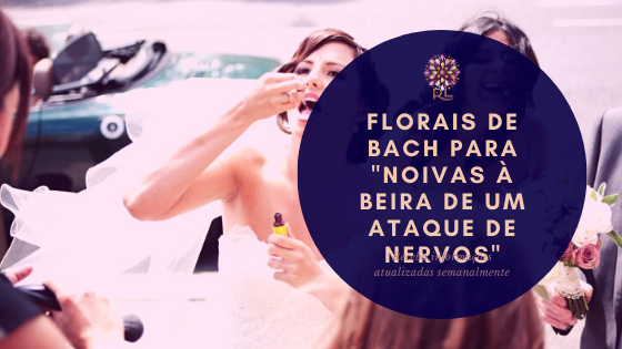 """Florais de Bach para """"Noivas à Beira de um Ataque de Nervos"""""""
