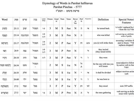 Answers to Dikduk Challenge Parshas Pinchus