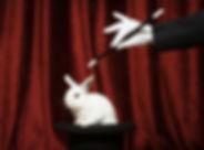 모자에서 토끼를 당기면