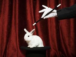 Ziehen ein Kaninchen aus einem Hut