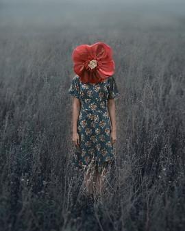 Flower 🌹 «I should never have listened