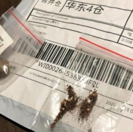 Sec. de Agricultura alerta sobre recebimento de sementes não solicitadas do exterior