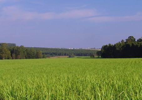 CNA encaminha propostas para Plano Trienal do Seguro Rural 2019/2021