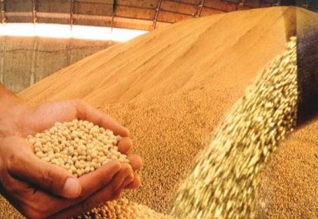Farsul faz alerta sobre o impacto da taxa de câmbio no preço da soja