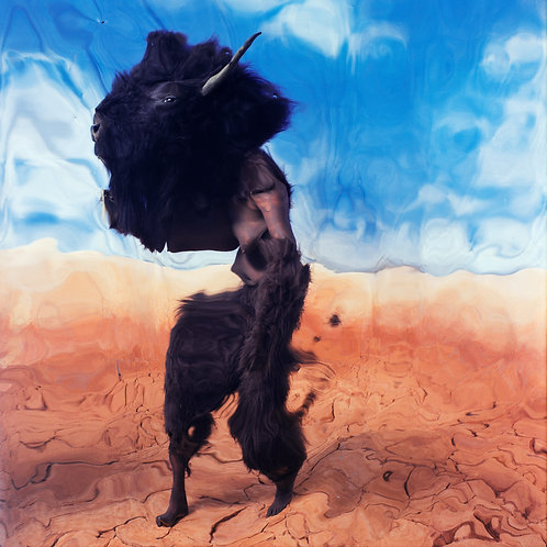 """""""Bison In Desert,#6"""" (c)Kristen Sard 2003"""