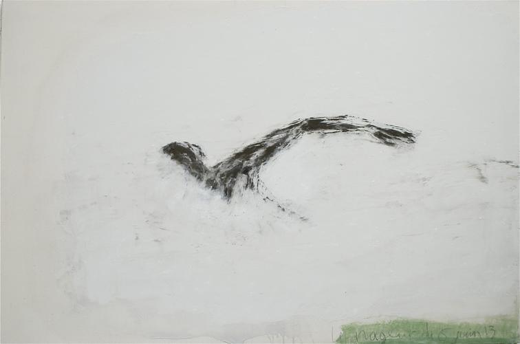 Le nageur du 6 VI 13