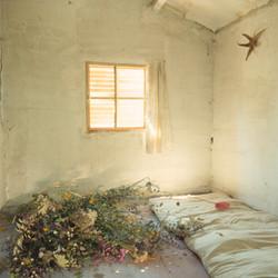 19ème chambre d'amour