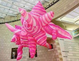 Anne Ferrer, Hot Pink