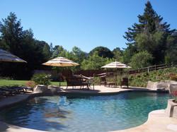 Pool - Backyard
