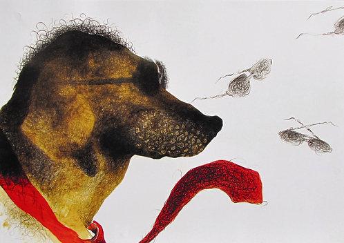 The Dog 4