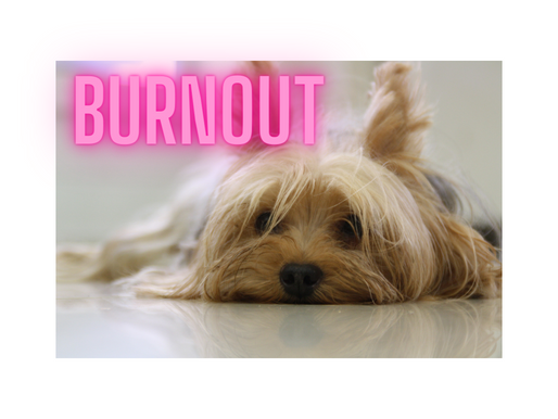7 Ways to Prevent Team Burnout