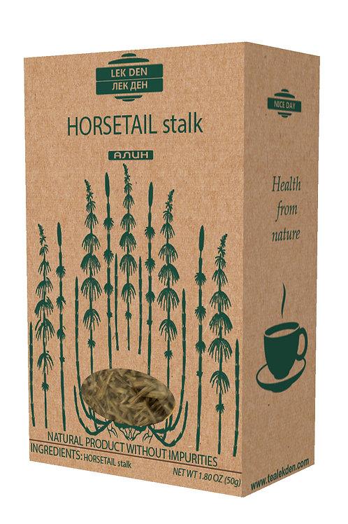 Horsetail stalk