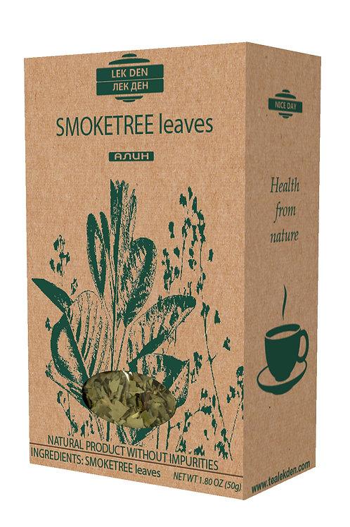 Smoketree leaves