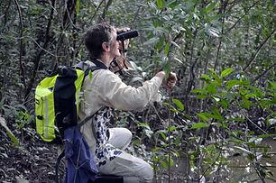 turismo, fotografía, comunidad safari