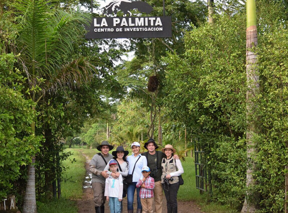 La Palmita