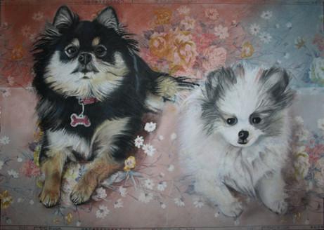 Chanel & Mylo