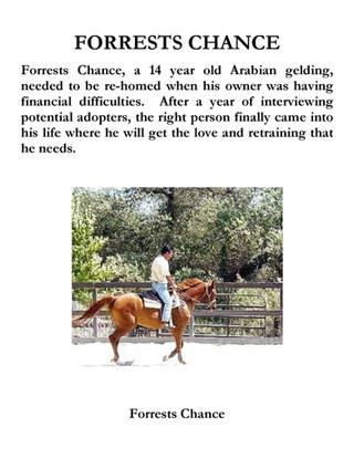 Forrests Chance.jpg