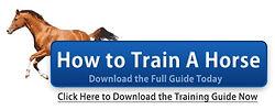 How to Train A Horse.jpg