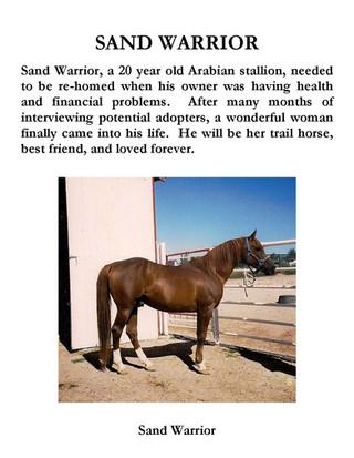 Sand Warrior.jpg