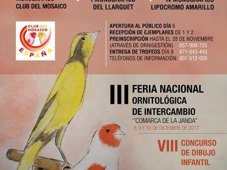 Un monográfico del Llarguet en Cádiz