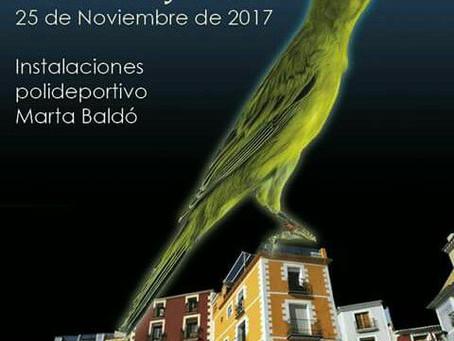 Se animan los concursos del Llarguet con el ONE DAY LLARGUET´S SHOW de Villajoyosa el 25 noviembre 2