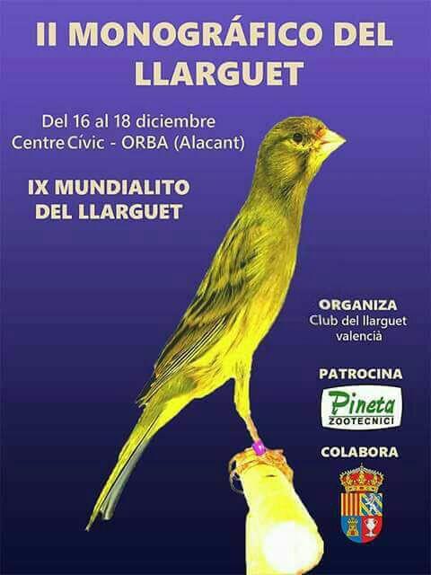 II Monográfico del Llarguet