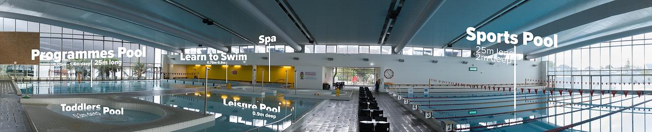 Pool Panorama .png