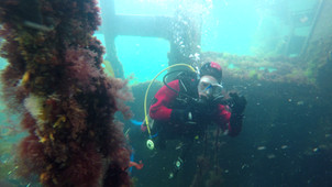 A diver learning to dive controlling buoyancy around the shipwrecks.