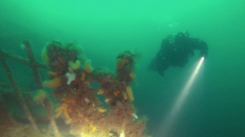 Technical Diver in Scapa Flow exploring the SMS Brummer.