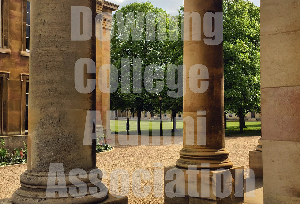 Digital Download - The Pillars of Downing
